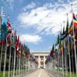 organizace-spojenych-narodu